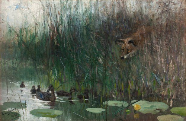 Flock_of_ducks_and_sneaky_fox_by_Bruno_Liljefors_1881