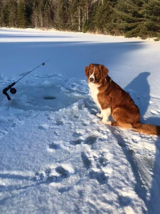 nemi fishing